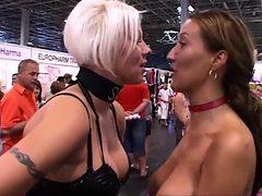 Porn exhibition act 1