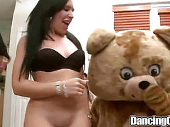 The Bear in the House on Dancingcock