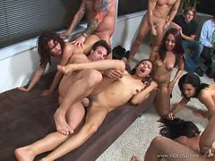 Wild Party With Horny And Slutty Babes