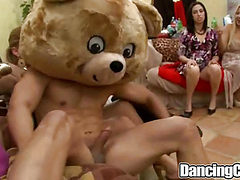 Bear Fiesta on Dancingcock