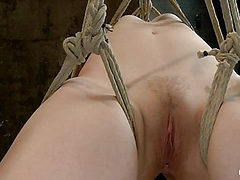 Blue Eyed Beauty Sarah Shevon Challenged Classic HogTie...
