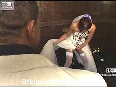 Thaina leggy shemale bride