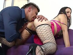 Busty Paloma Vargas in sexy fishnet stockings gets her ...