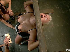 Blonde Meat Double Teamed